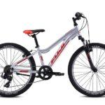 DYNAMITE Silver 1 150x150 - Велосипед Fuji 2021 MTB KIDS мод. Dynamite 24 SPORT  A1-SL р. 12 цвет серебряный металлик