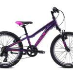 Dimamit fioletovyy 1 150x150 - Велосипед Fuji 2021 MTB KIDS мод. Dynamite 20  A1-SL р. 10 цвет фиолетовый металлик